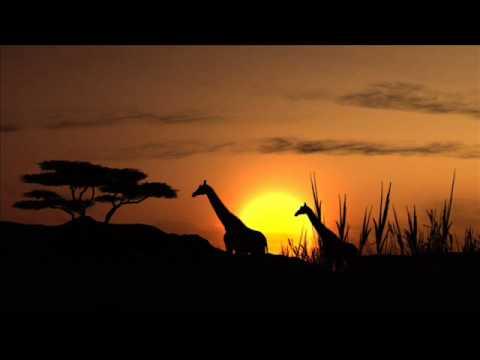 Manu Dibango African Paradise