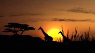 Manu Dibango African Paradise...