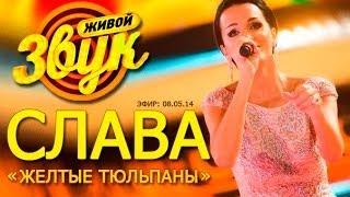 "Слава - Желтые тюльпаны ( шоу ""Живой звук"" , 08.05.14)"