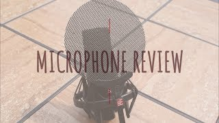 SE Electronics X1s Microphone Demo (guitar)