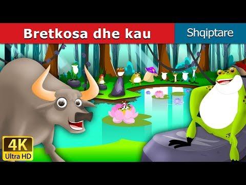 Bretkosa dhe kau | Fëmijët Tregime | Perralla per femije shqip | 4K UHD | Albanian Fairy Tales