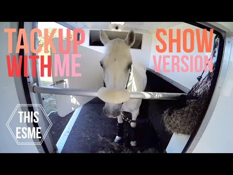 Tack up with me for a Show   GoPro   This Esme