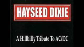 Hayseed Dixie- Dueling Banjos.flv