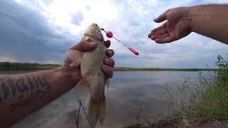 Рыбалка в Северном Казахстане Болото Красная шапка