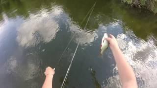 Рибалка на головня. Риболовля на Уралі