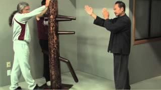 Wing Chun Dummy Intro