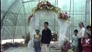고양꽃박람회(99.10) 마자막나드리
