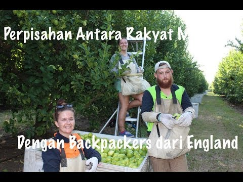 Staff Malaysia & Backpackers England.      ⭐  ⭐  ⭐  ⭐  ⭐    (KERJA DI AUSTRALIA TRUSTED).