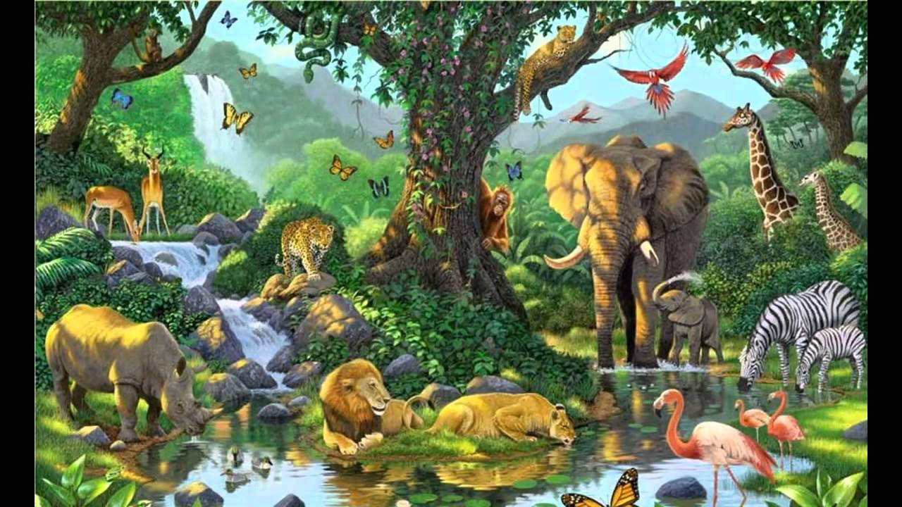 jungle book wallpaper - youtube