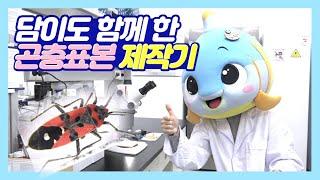 연구원이 알려주는 곤충…