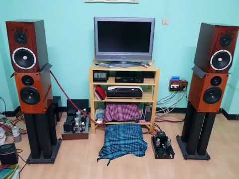 Musical Paradise MP 301 MK3 Deluxe Version 2018 +DAC Dual 4497+ลำโพงThe Possible CH3