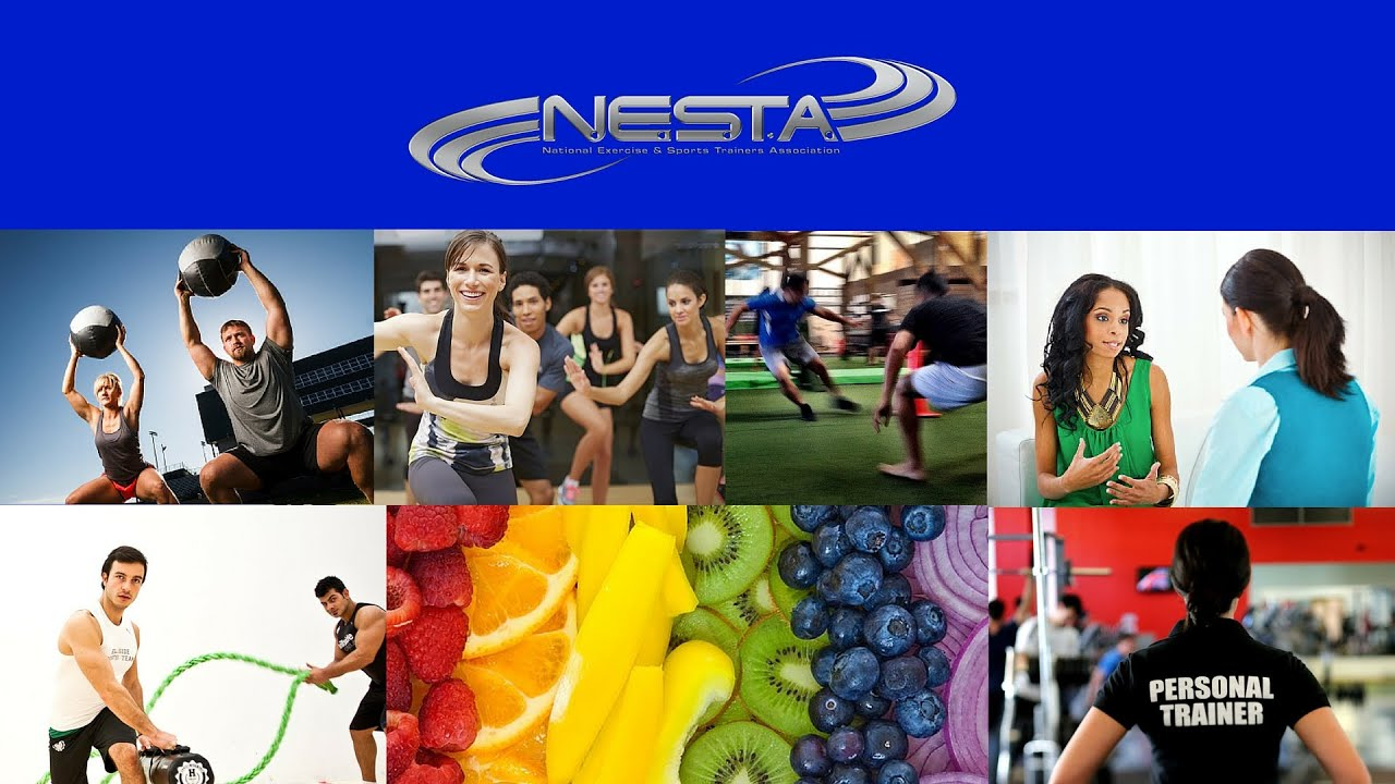 Nesta fitness association personal trainer certification youtube nesta fitness association personal trainer certification xflitez Image collections