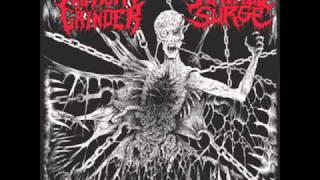 Hatred Surge-Mood Stabilizer