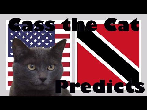 2019 GOLD CUP PREDICTIONS – USA VS TRINIDAD & TOBAGO – CASS THE CAT PREDICTS