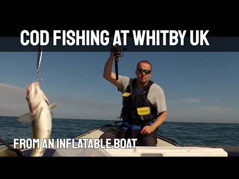 Sea Fishing - Jigging For Cod At Whitby UK -  In A Honda Honwave Inflatable Boat - GoPro