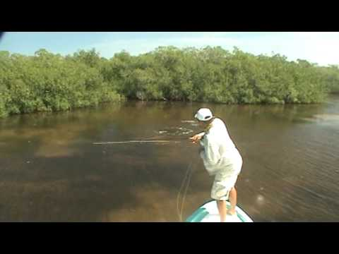 Cancun Fly Fishing With Enrique