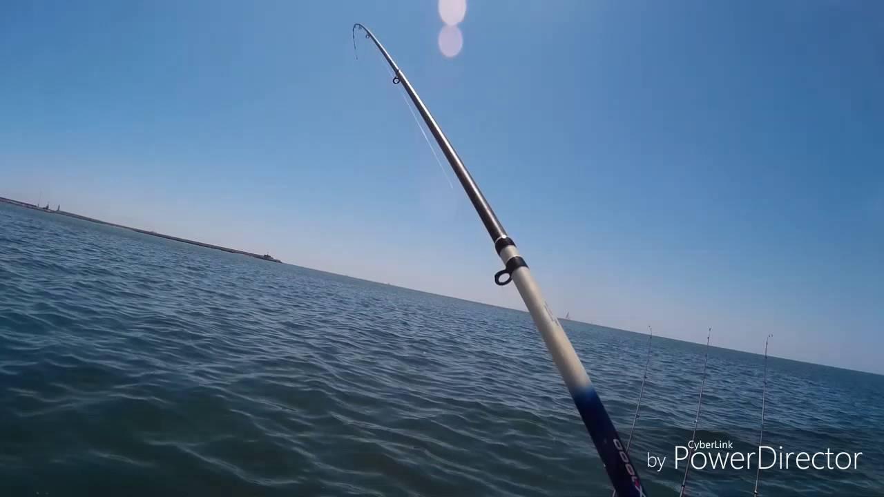 Pesca Alle Orate Dalla Barca A Livorno (video2)