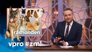 Purebred dogs - Sunday with Lubach (S08)
