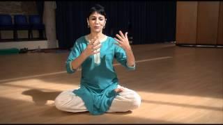 DANZA BHARATANATYAM - Presentazione di Nuria Sala Grau