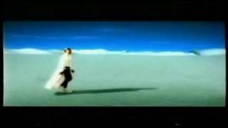 Groovezone - Eisbaer