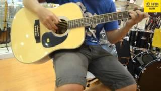 Test Guitar Suzuki SDG-15 NL