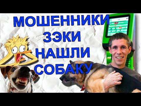efa9d0e59be1d Мошенник угрожает изнасиловать собаку. Мошенники на olx. Развод по телефону  - YouTube