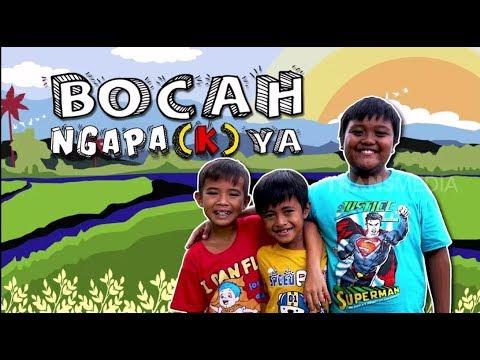 Kucing Ilham Hilang | BOCAH NGAPA(K) YA  (16/02/19)