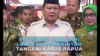 Prabowo Dukung Langkah Pemerintah Tangani Kasus Papua