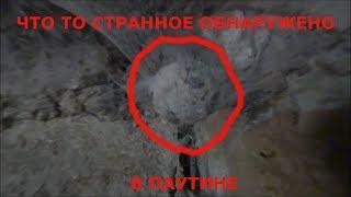 Что то странное обнаружено в паутине в подвале. дагестан. странный предмет. удивительная находка
