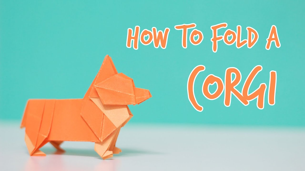 How to Fold a Corgi 웰시코기 접는법 (Steven Casey) | Doovi - photo#19