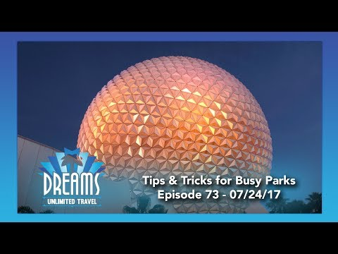 Tips & Tricks for Dealing with Theme Parks During High Crowds | 07/24/17