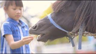 [兒童攝影] 動物農場親子寫真/華山藝文特區/台北/小巴老師攝影