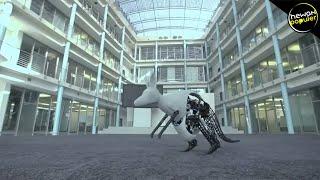 Mirip Banget Sama Aslinya! 10 Robot Canggih Yang Menyerupai Hewan
