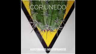 "Cor:unedo - ""AGOSTODANESE/AGOSTOFRANCESE"" Full Album (Entry, 2018)"
