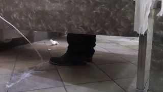 jizzing on people shoe prank