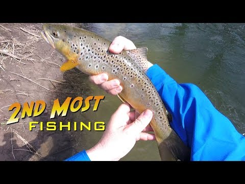 Spinning For Trout On Black Earth Creek 4-16-2019