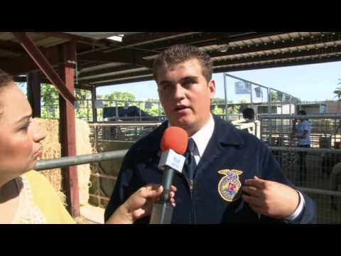 Spotlight on Buena Park High School Future Farmers of America Program