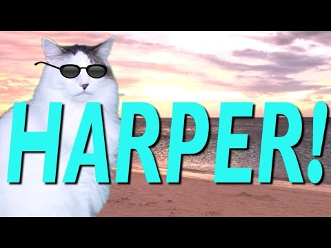 HAPPY BIRTHDAY HARPER! - EPIC CAT Happy Birthday Song