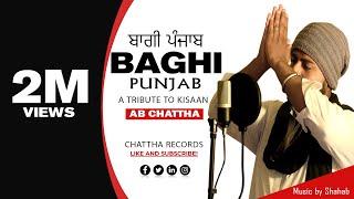 Baghi Punjab by Pakistani Singer | AB Chattha | Prod. Shahab Hamdani