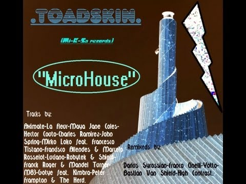 ToadSkin - Microhouse (Mi-K-Sa records)