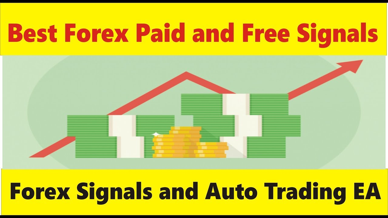 Best Forex Paid And Free Signals Service Auto Trading Robot Tutorial By Tani In Urdu Hindi -