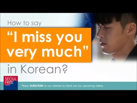 How To Say I Miss You So Much In Korean Learn Language Youtube