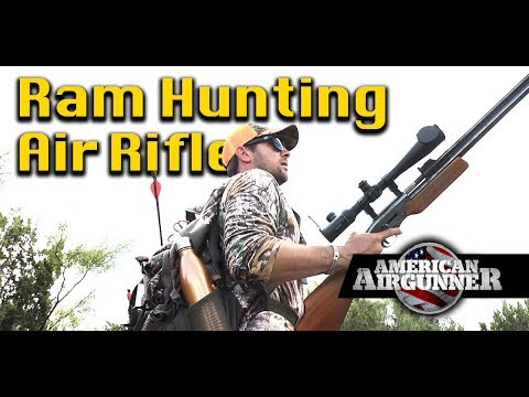 Air Rifle Ram Hunting in Texas : American Airgunner