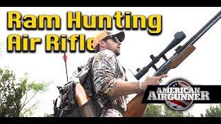 Air Rifle Ram Hunting in Texas : American Airgunner