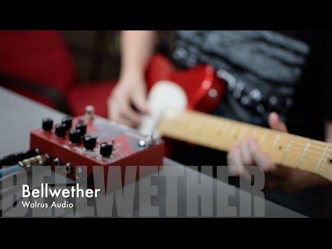 Walrus Audio Bellwether demo