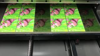 [DREAMJET600] OHP Film / UV PR…