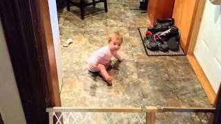 Baby Gate Or Door?