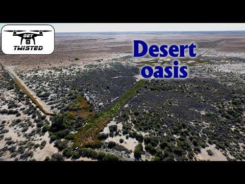 Coward Springs - Oasis In The Desert