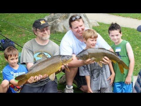 APN | Comfort Food: Carp Fishing At Spy Pond