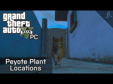GTA V PC: Peyote Plants Locations (Play as Animals!)